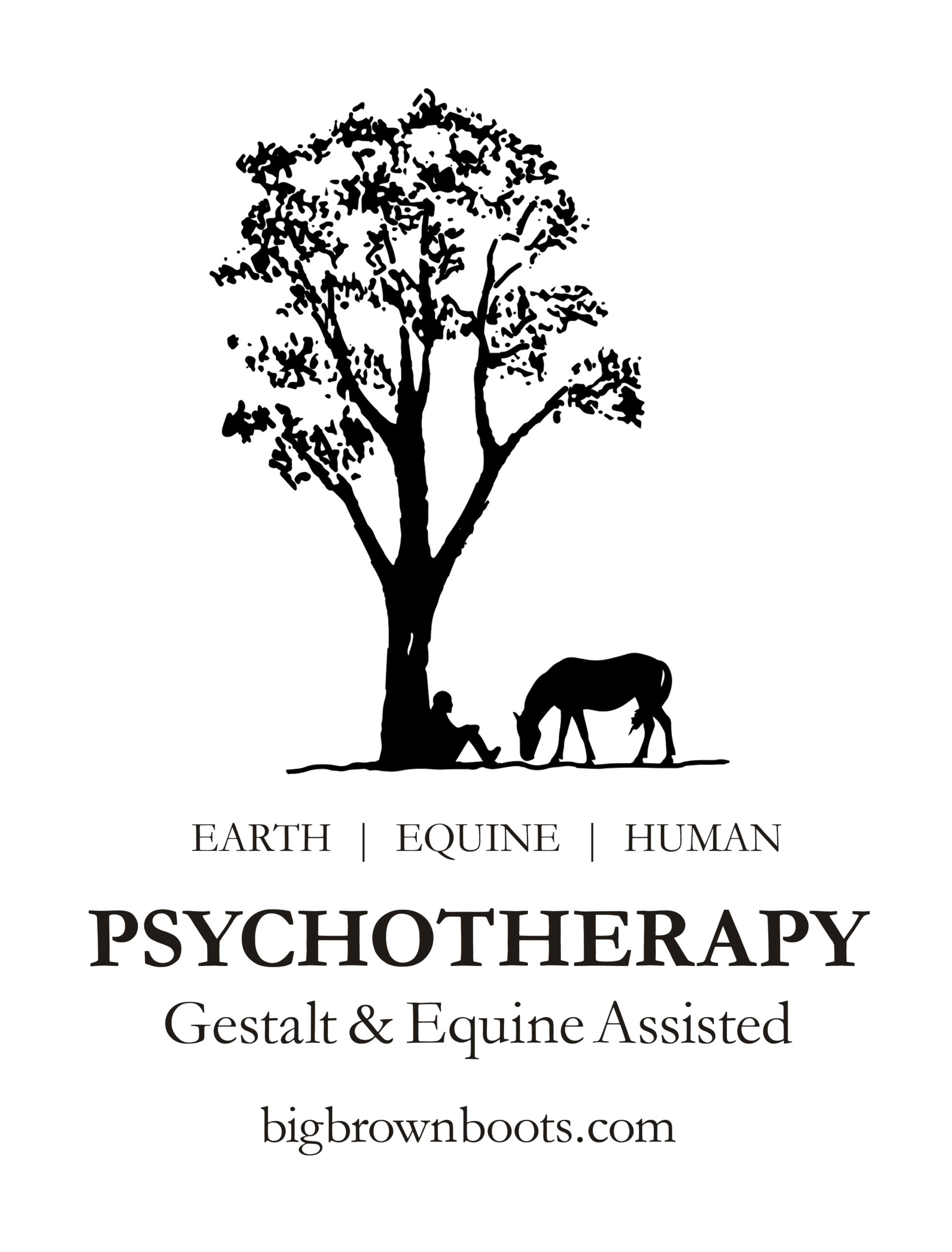 Big Brown Boots Psychotherapy - Gestalt & Equine Assisted